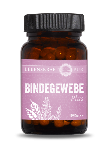 Bindegewebe Plus