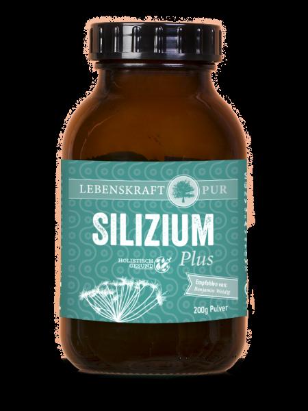 Silizium Plus